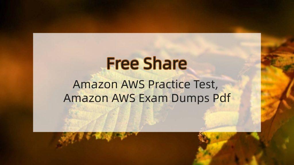 Amazon AWS Exam Dumps